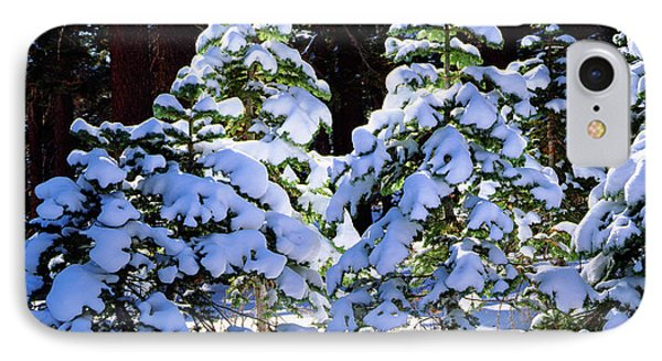 Usa, California, Snow-covered Red Fir IPhone Case by Jaynes Gallery
