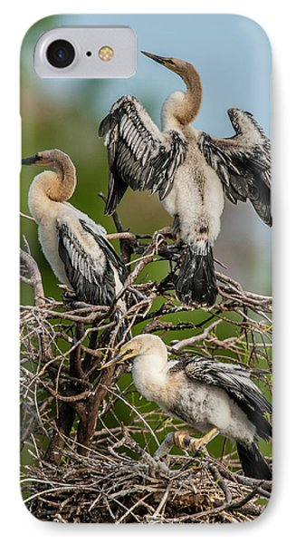 Usa, Florida, Green Cay, Wakodahatchee IPhone Case by Jaynes Gallery
