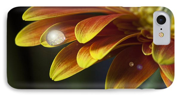 Waterdrop On A Gerbera Daisy Petal IPhone Case
