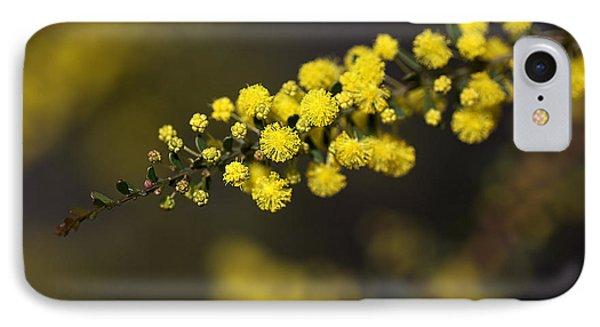 Wattle Flowers Phone Case by Joy Watson
