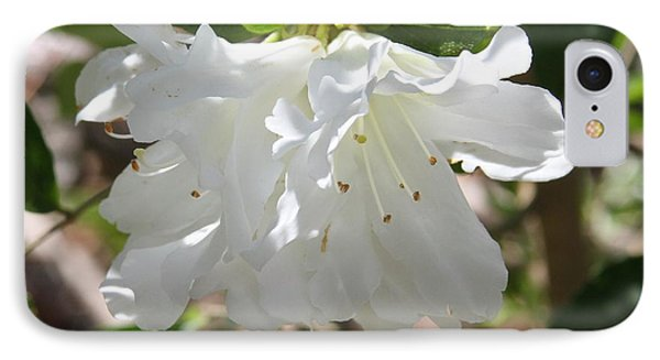 White Azalea IPhone Case by Cathy Lindsey