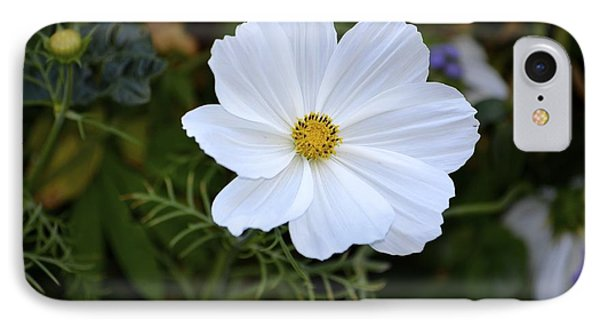 White Flower IPhone Case by Alex King