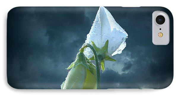White Sweet Pea  IPhone Case by Marjorie Imbeau