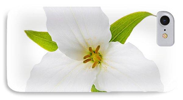 White Trillium Flower  IPhone Case by Elena Elisseeva