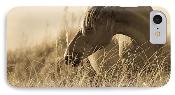 Wild Horse On The Beach IPhone Case