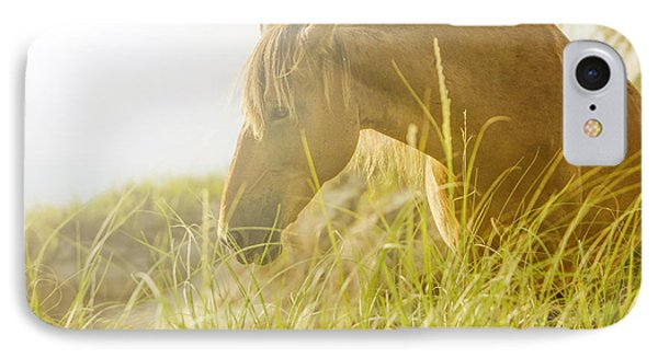 Wild Horse On The Outer Banks IPhone Case by Diane Diederich