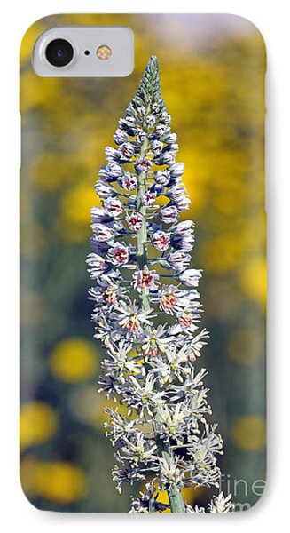 IPhone Case featuring the photograph Wild Mignonette Flower by George Atsametakis