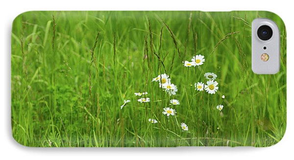 Wildflowers In A Field, Gooseberry IPhone Case by Panoramic Images