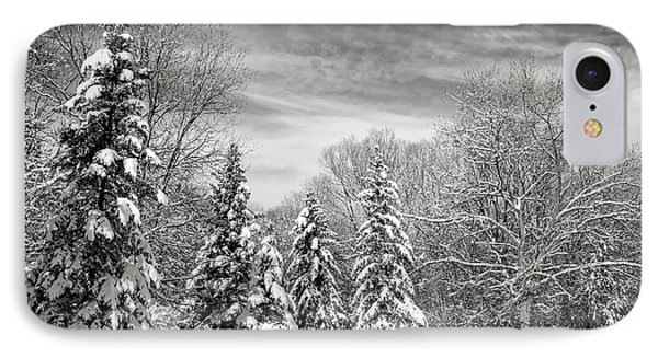Winter Landscape IPhone Case by Elena Elisseeva