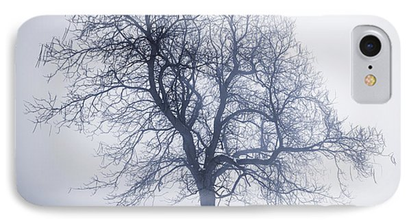 Winter Tree In Fog IPhone Case by Elena Elisseeva