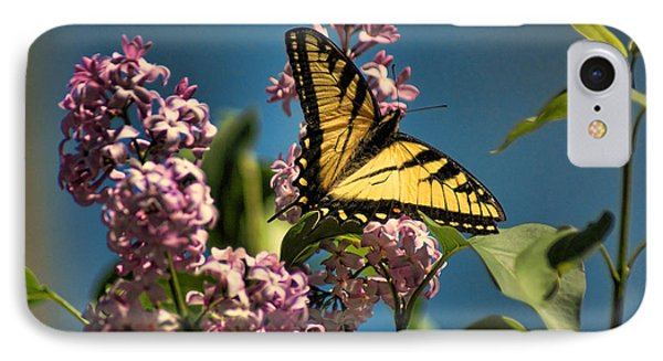 Yellow Swallowtail IPhone Case by Rick Friedle
