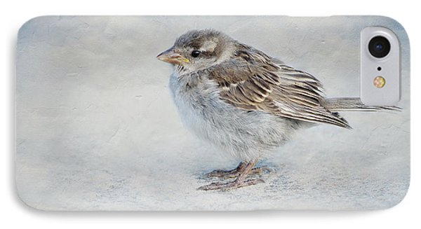 Sparrow IPhone Case by Heike Hultsch