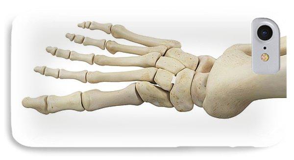 Human Foot Anatomy IPhone Case