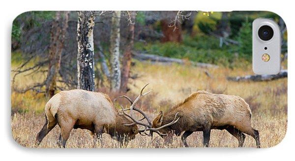 Usa, Colorado, Rocky Mountain National IPhone Case