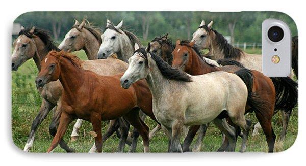 Arabian Horses Phone Case by Angel  Tarantella