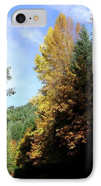 Autumn 2 Phone Case by J D Owen