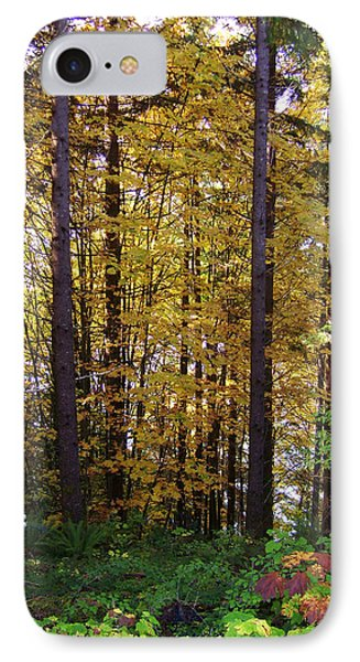 Autumn 5 Phone Case by J D Owen