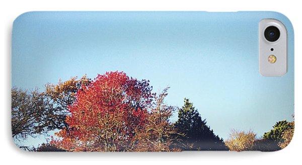 Autumn Phone Case by Les Cunliffe
