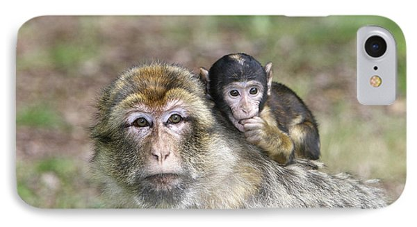 Barbary Macaques IPhone Case by M. Watson
