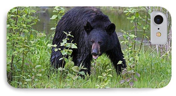 Black Bear Phone Case by Linda Freshwaters Arndt