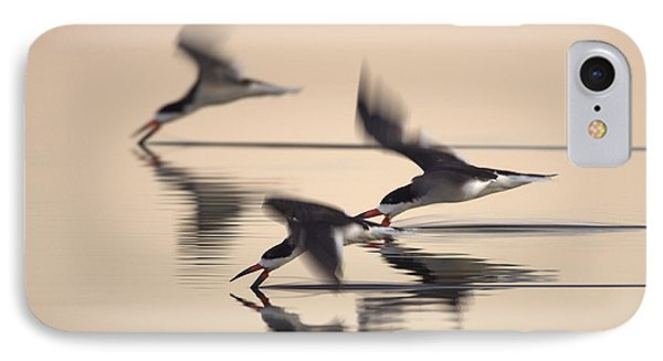 3 Black Skimmers  382z3059 IPhone Case by David Orias
