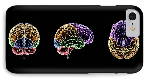 Brain IPhone Case by Sci-comm Studios