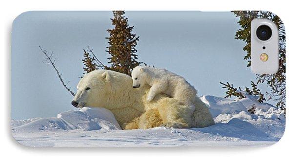 Canada, Manitoba, Wapusk National Park IPhone Case by Jaynes Gallery