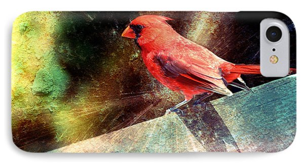 Cardinal  IPhone Case by Elaine Manley
