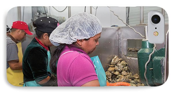 Commercial Oyster Processing IPhone Case by Jim West
