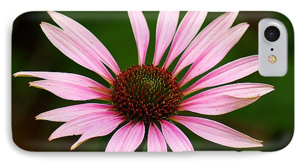 IPhone Case featuring the photograph Coneflower - Echinacea by Lisa L Silva
