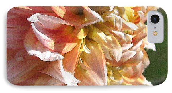 Dahlia Named Peaches-n-cream Phone Case by J McCombie