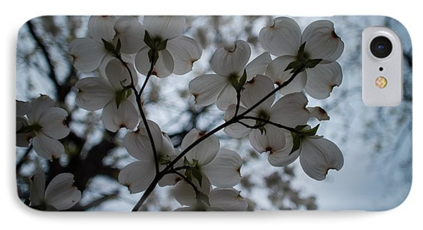 IPhone Case featuring the photograph Dogwoods by Wayne Meyer
