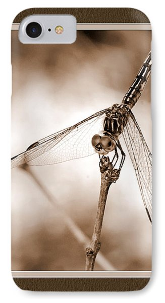 Dragonfly Close-up II IPhone Case by Charles Feagans