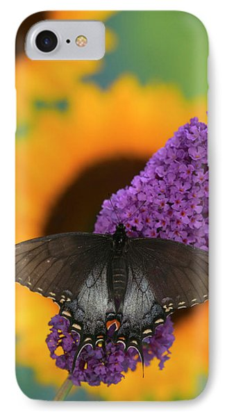 Eastern Tiger Swallowtail, Black Form IPhone Case
