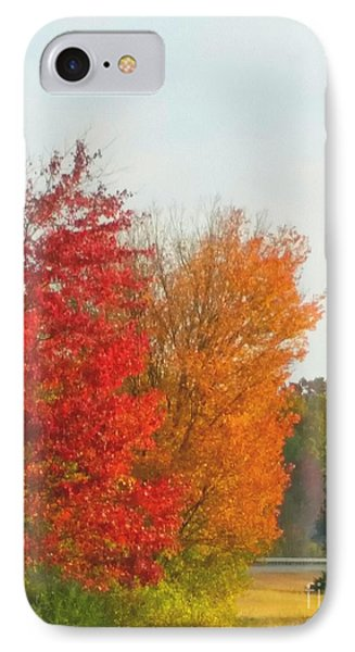 Fall Leaves IPhone Case by Rose Wang