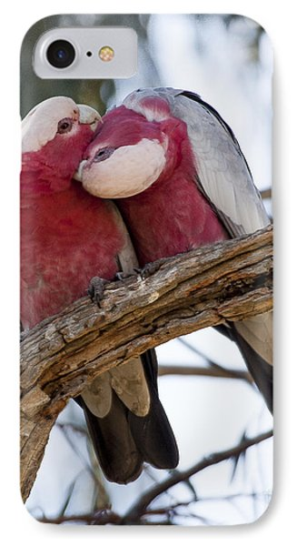 Galahs Phone Case by Steven Ralser