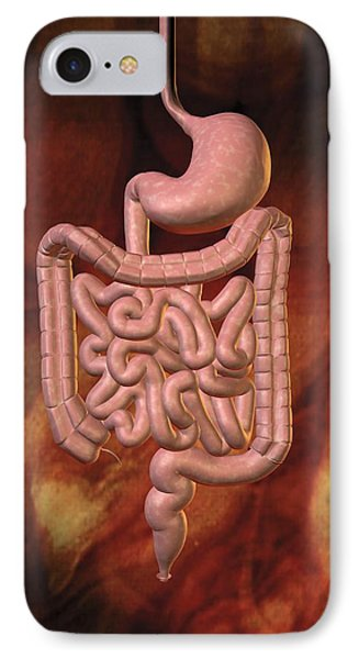 Gastrointestinal System IPhone Case