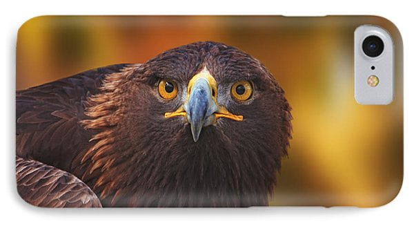 Golden Eagle  IPhone Case by Brian Cross