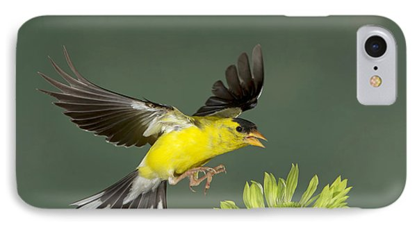 IPhone Case featuring the photograph Gotcha by Gerry Sibell