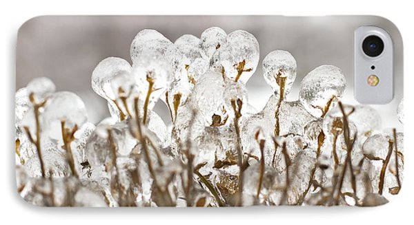 Ice On Branches IPhone Case by Blink Images