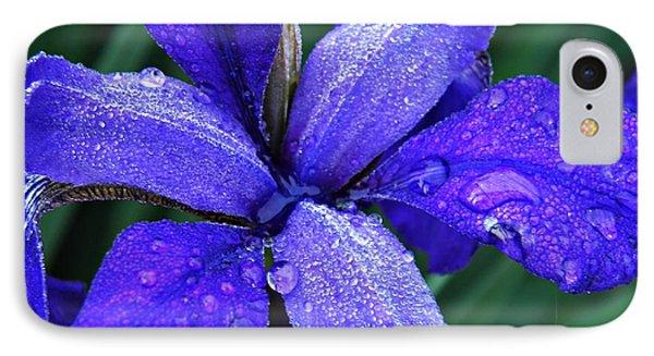 Iris 4 IPhone Case by Sarah Loft