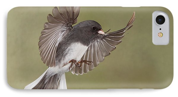 IPhone Case featuring the photograph Jimmy Junco by Gerry Sibell