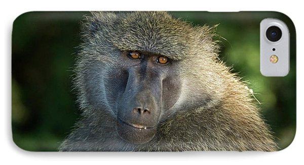 Kenya, Samburu National Reserve IPhone Case by Jaynes Gallery
