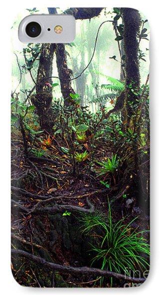Misty Rainforest El Yunque Phone Case by Thomas R Fletcher