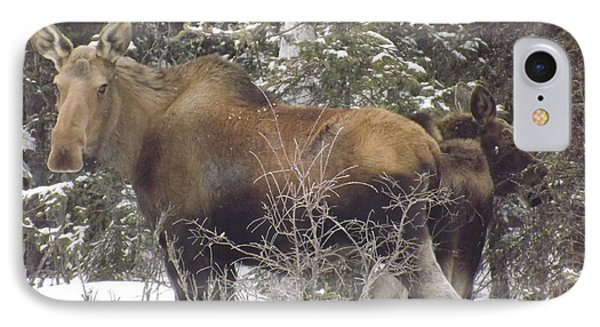 Moose Phone Case by Jennifer Kimberly