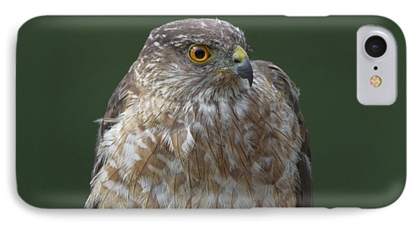 IPhone Case featuring the photograph My Best Side by Gerry Sibell
