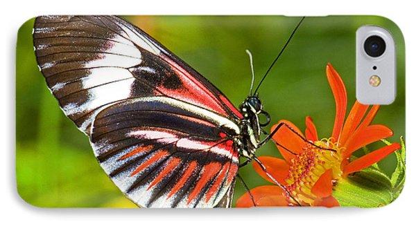 Piano Key Butterfly Phone Case by Millard H Sharp
