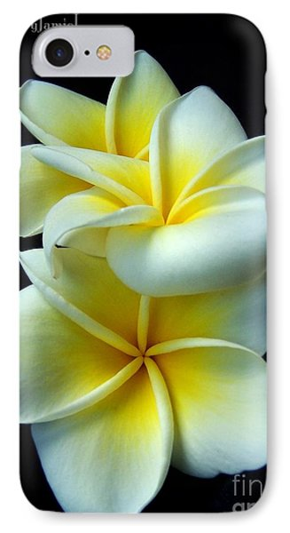 3 Plumerias IPhone Case
