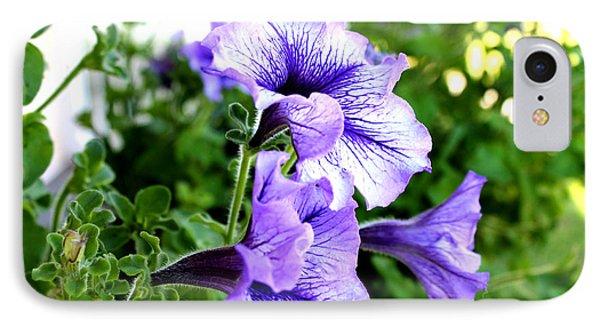 3 Purple Petunias IPhone Case