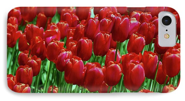 IPhone Case featuring the photograph Red Tulips  by Allen Beatty